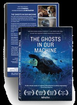 Ghosts DVD SM